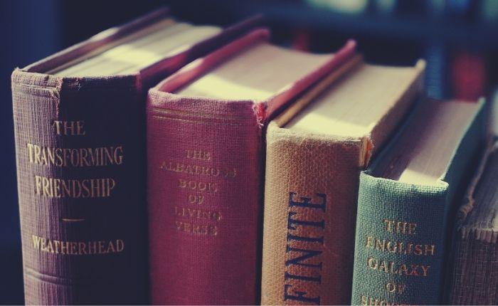 montar-sebo-de-livros-variedade