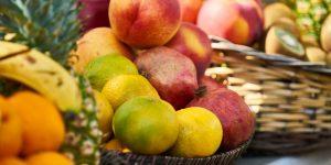 polpa de frutas para vender