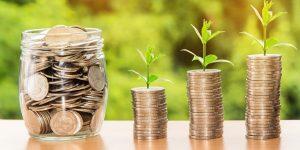 Como economizar ganhando pouco - Dicas que funcionam! (Imagem: Nattanan Kanchanaprat/Pixabay)