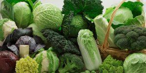 hortaliças que dão mais lucro